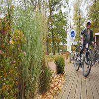 Les Vosges, Terre de cyclisme